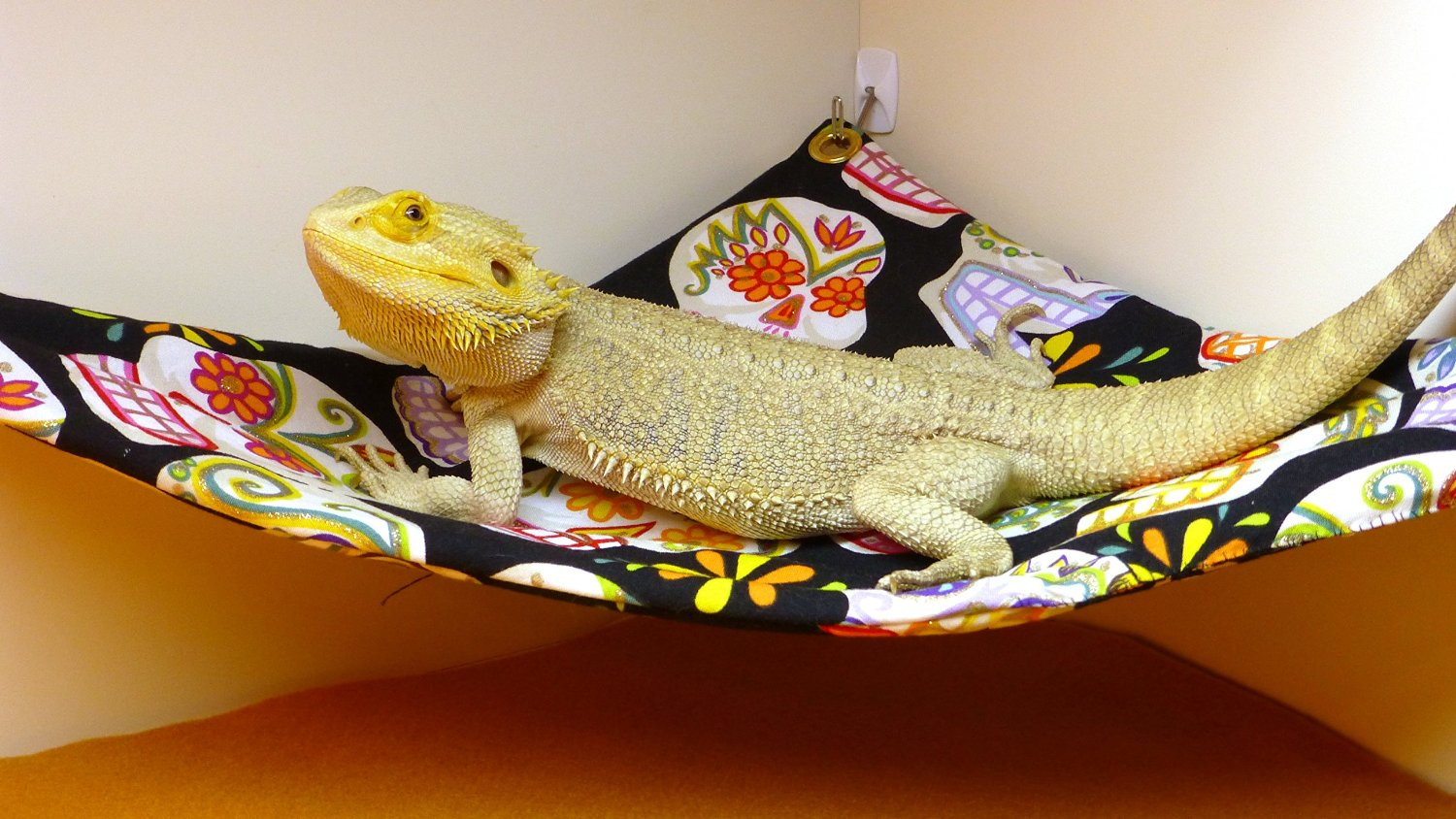 hammock     carolina designer dragons hammock for bearded dragons sugar      rh   carolinadesignerdragons