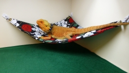hammock-for-bearded-dragons-pink-sparkles-fabric-with-adhesive-hooks-1