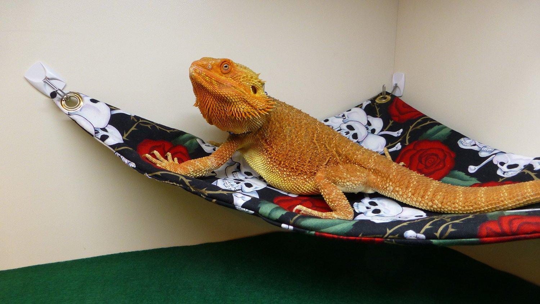 hammock     carolina designer dragons hammock for bearded dragons skulls and      rh   carolinadesignerdragons