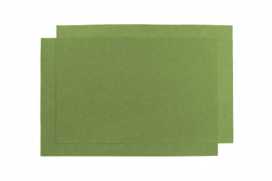 reptile-carpet-olive-24-x-36-two-sheets