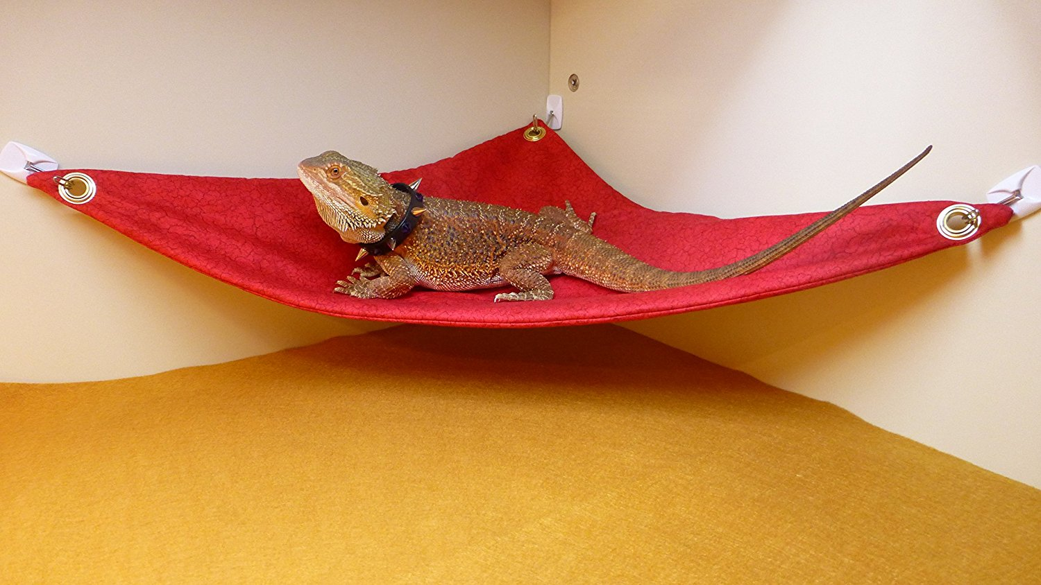 hammock for bearded dragons red crackle fabric with suction cup hooks carolina designer dragons hammock for bearded dragons red crackle      rh   carolinadesignerdragons