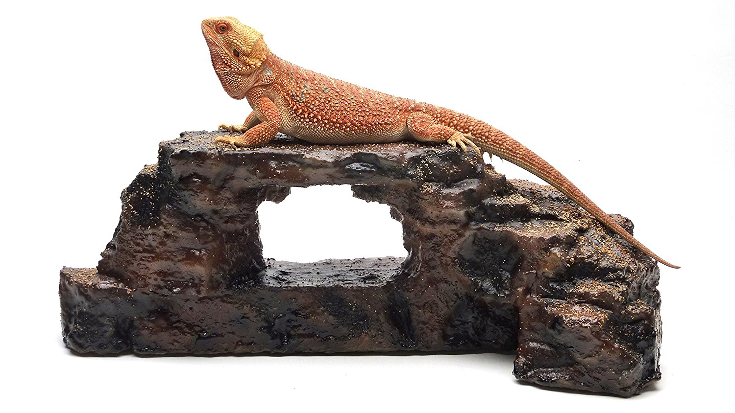 Carolina designer dragons lavish lizards 39 rock arch for Decoration habitat