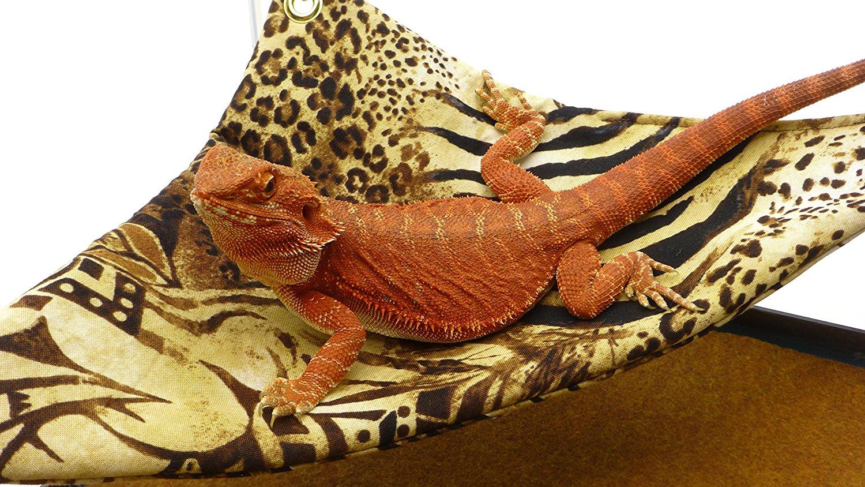 mini hammock for bearded dragons safari fabric with suction cup hooks carolina designer dragons mini hammock for bearded dragons safari      rh   carolinadesignerdragons