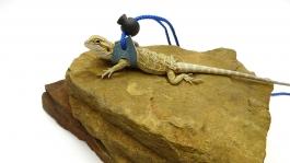 Ogle Lizard Leash, Limited Edition Turquoise Web