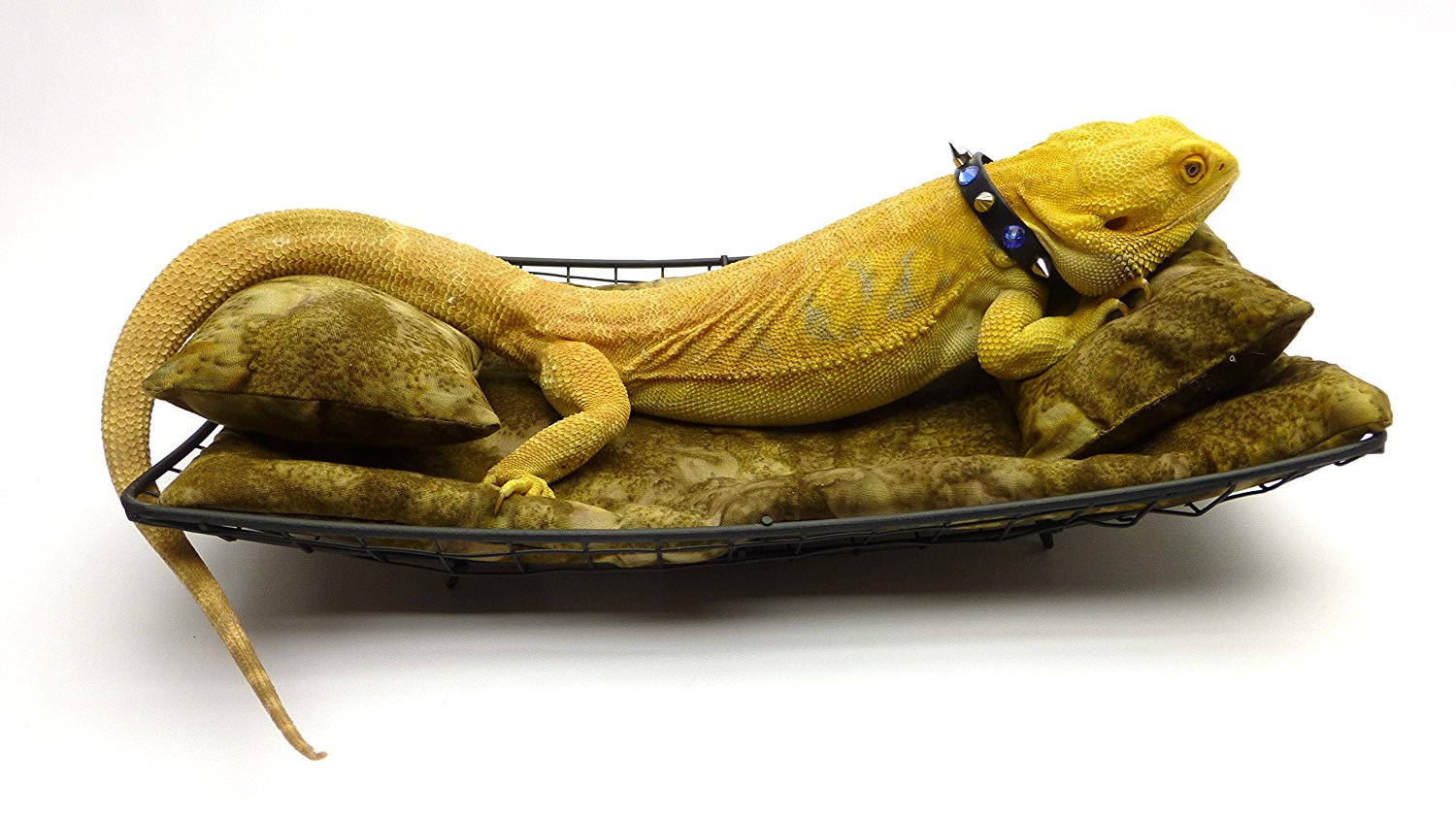 Carolina Designer Dragons Chaise Lounge for Bearded Dragons Brown