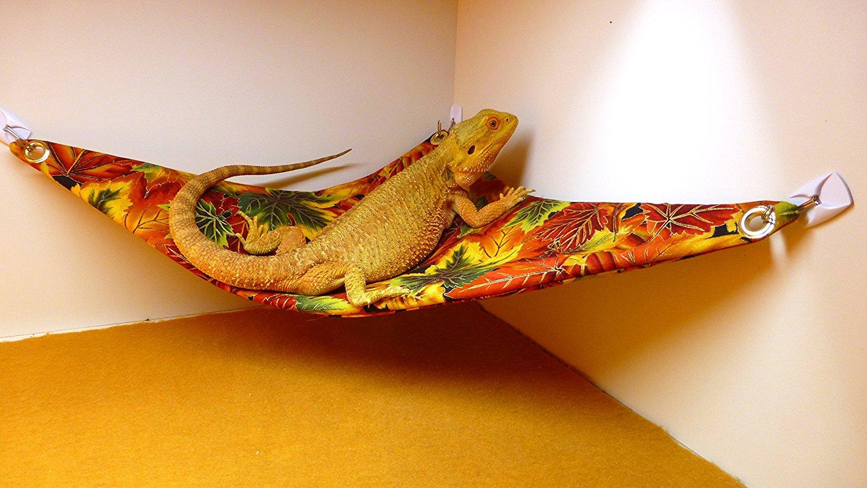hammock     carolina designer dragons hammock for bearded dragons autumn      rh   carolinadesignerdragons