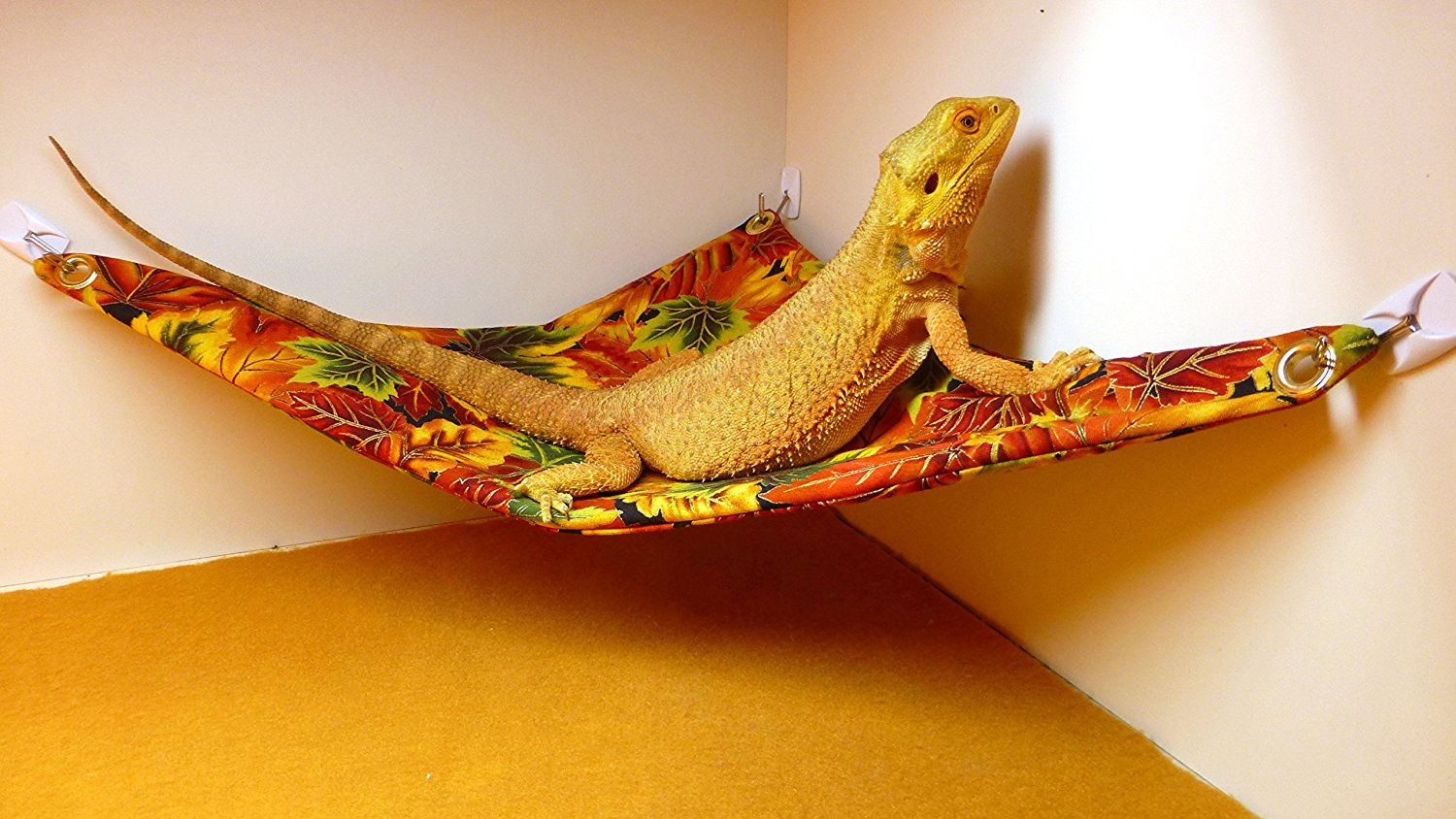 hammock for bearded dragons autumn leaves fabric with adhesive hooks carolina designer dragons hammock for bearded dragons autumn      rh   carolinadesignerdragons