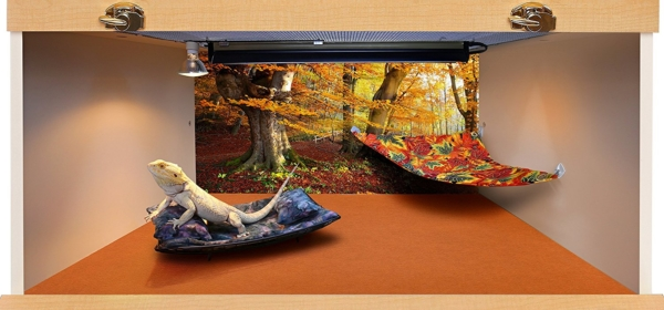 Hammock for Bearded Dragons, Autumn Leaves fabric with adhesive hooks